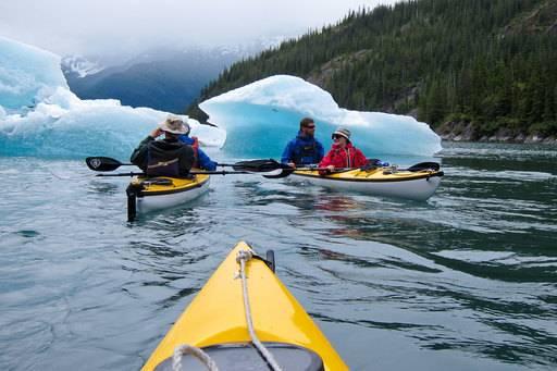 snow goose kayaking in alaska