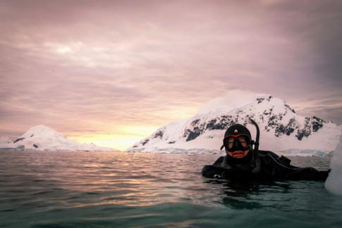 greg mortimer antarctica snorkelling