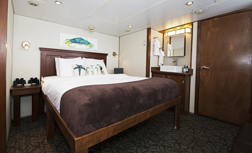 admiralty dream alaska cruise cabin owners suite