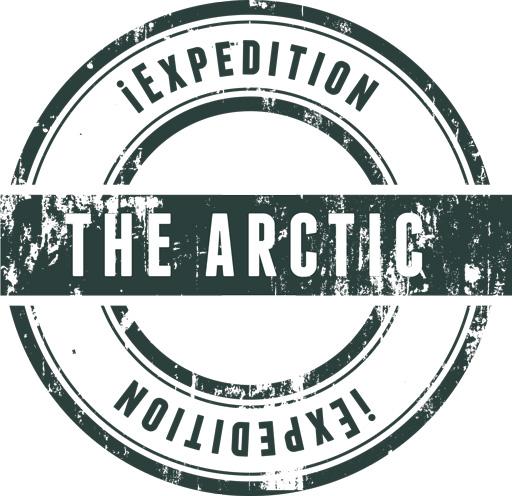 The arctic watermark