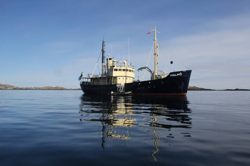 Malmo, Orca Arctic Cruise
