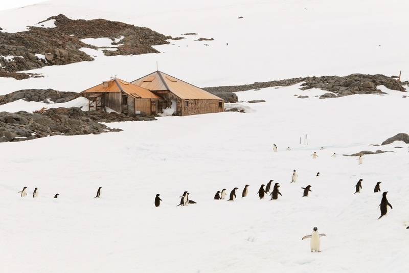 Mawson's Hut, Antarctica cruise from New Zealand