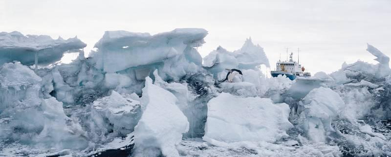 Iceberg, Antarctica cruise from New Zealand