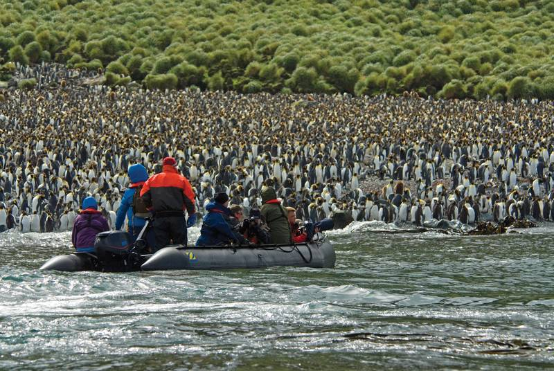 sub-Antarctica islands tour, Antarctica cruise from New Zealand