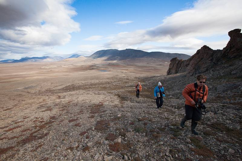 Hiking in Wrangel Island, Arctic Polar bear cruise