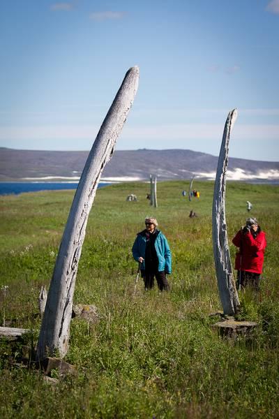 Whale bones, Wrangel Island, Arctic Polar bear cruise