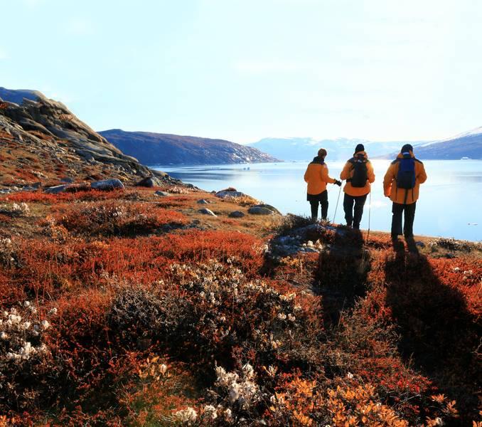 Exploring Greenland, Arctic cruise