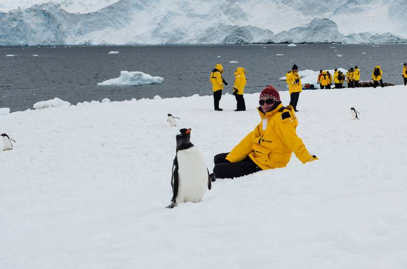 Antarctic meet the locals, Antarctica cruise