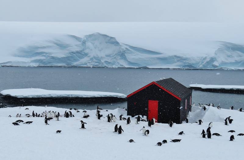 Antarctic research base, Cruise to Antarctica