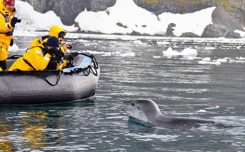 Seal and Zodiac, Cruise to Antarctica