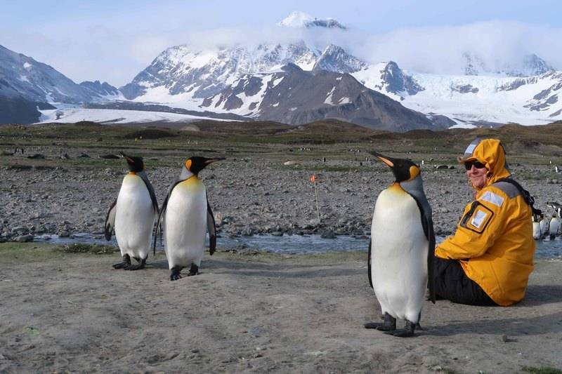 Meeting the locals South Georgia, Cruise to Antarctica
