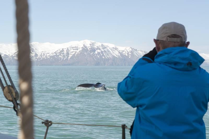 Fram in Greenland, Arctic Cruise