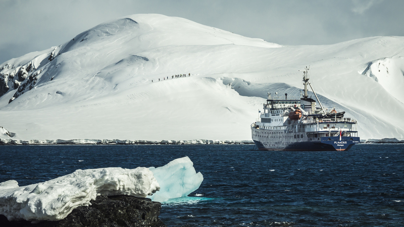 Plancius in Antarctica, Cruise to Antarctica