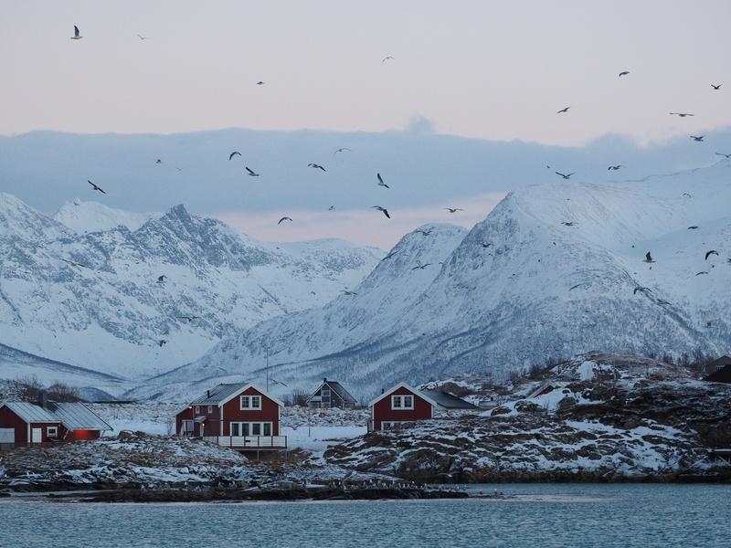 Norway village, Arctic cruise