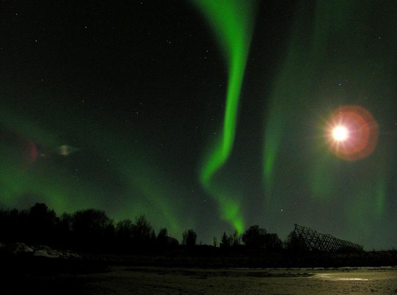 Northern lights, Arctic cruise