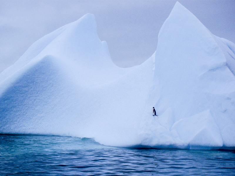 Iceberg, Antarctica cruise