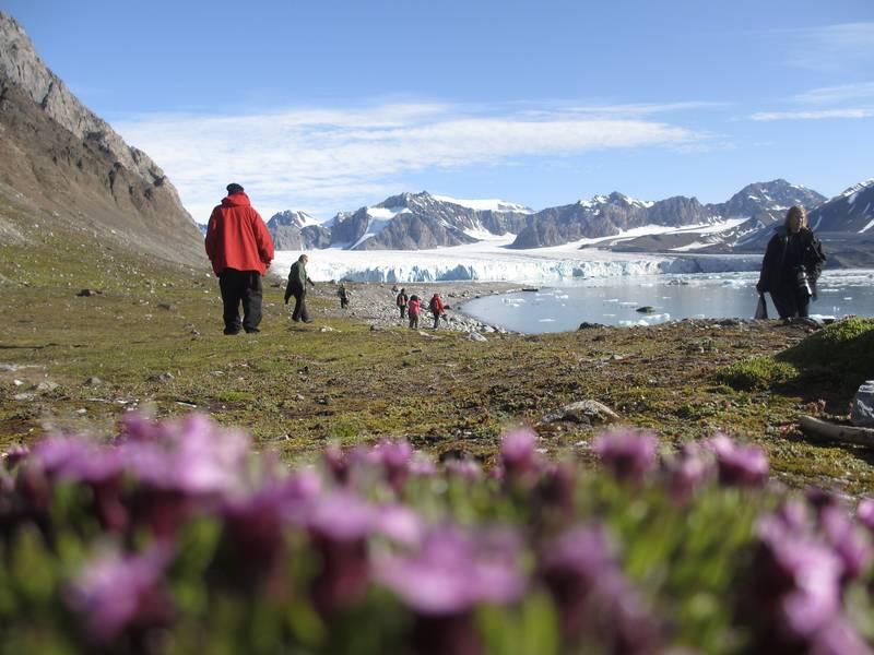 Arctic flora, Arctic cruise