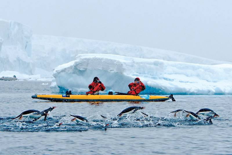 Kayaking in Antarctica, Cruise to Antarctica
