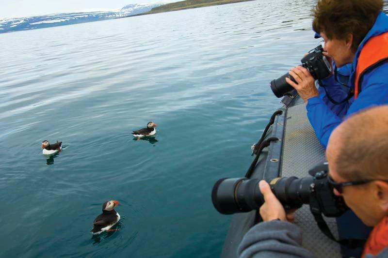 Iceland photographers