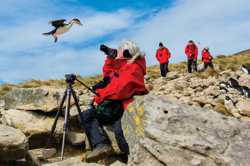 South Georgia photographers, Antarctica cruise