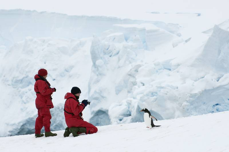 Antarctica tourists with penguin, Cruise to Antarctica