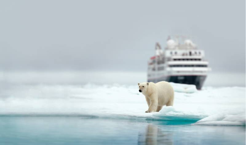 Silver Explorer with Polar bear, Antarctic cruise ship