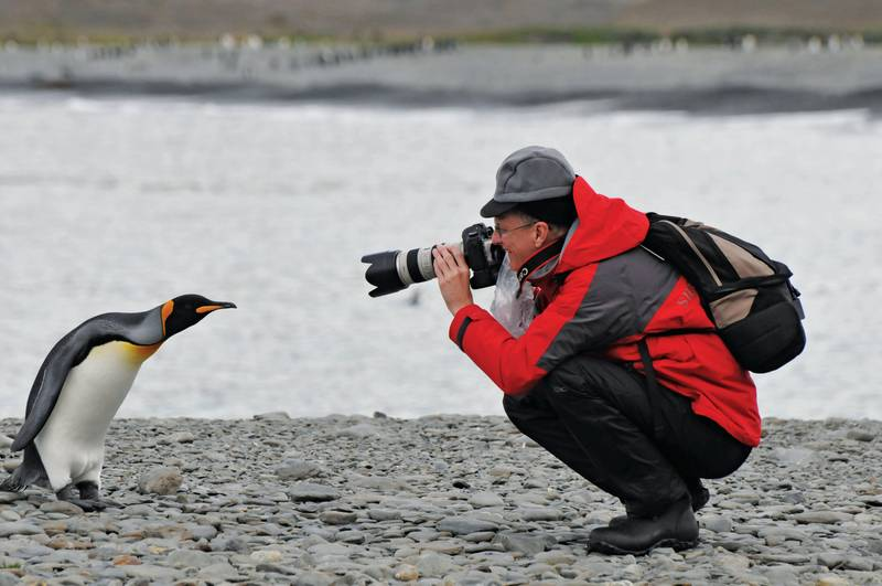 South Georgia photographer, Antarctica cruise