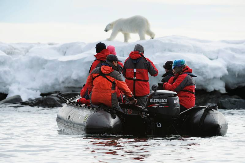 Zodiac cruise with Polar bears, Arctic cruise