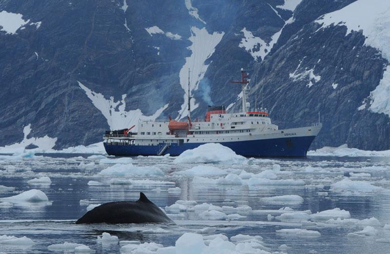 MV Ushuaia in Antarctica, Antarctic cruise ship