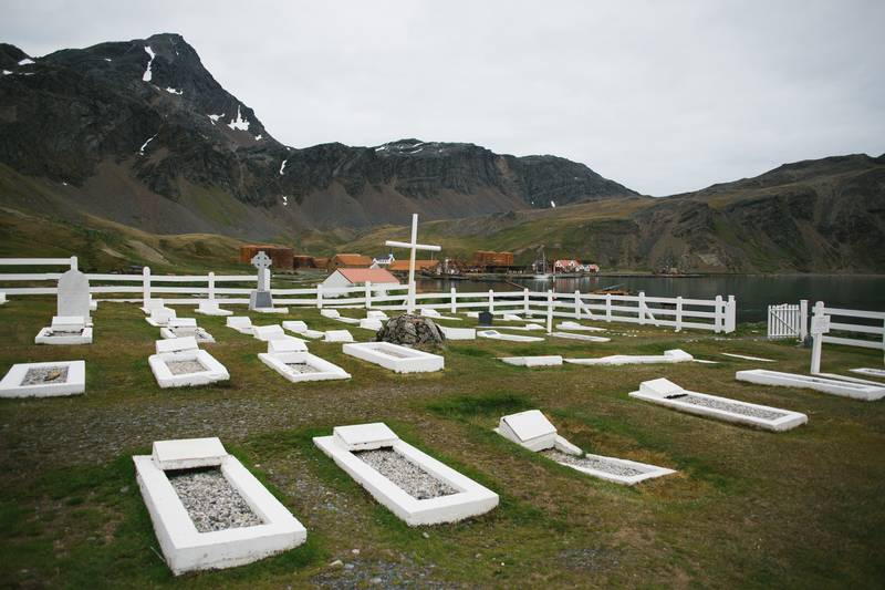 South Georgia grave, Cruise to Antarctica