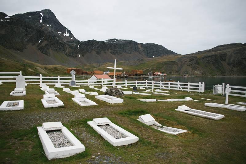 South Georgia grave, Cruise to Antarctica