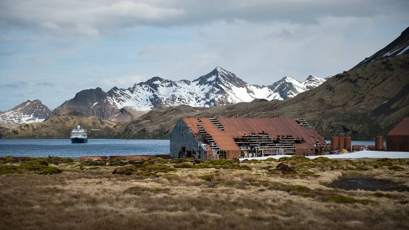 Whaling station on South Georgia, Cruise to Antarctica
