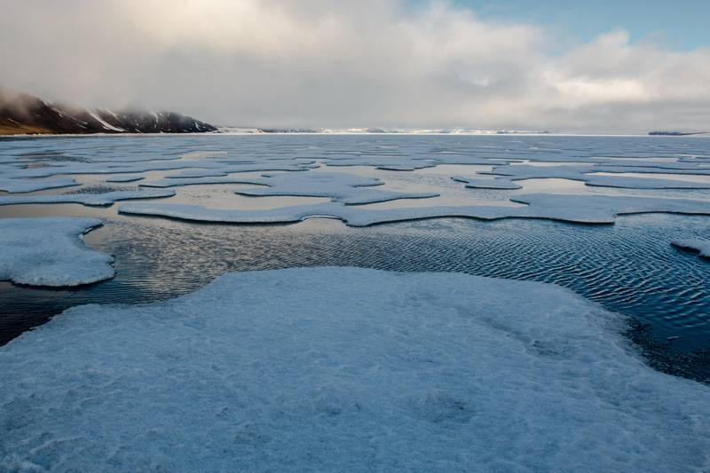 Ice floe, Franz Josef Land cruise