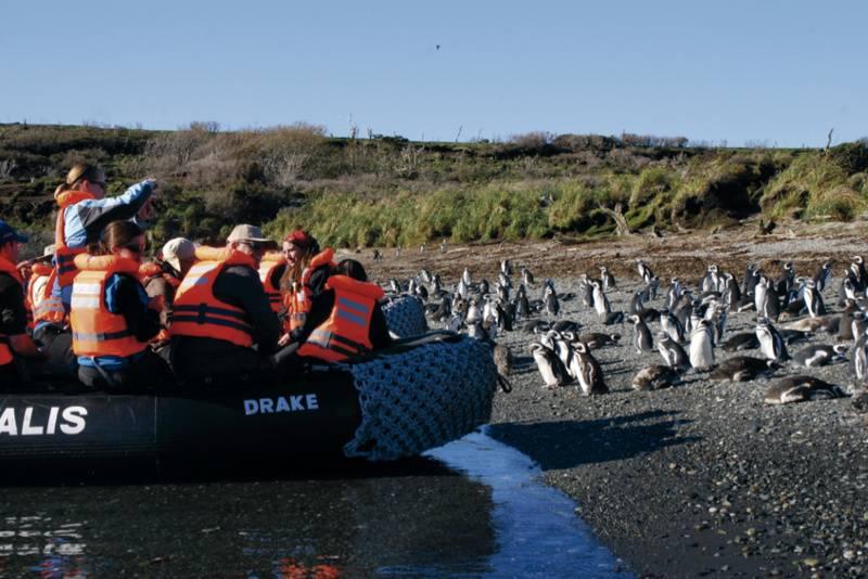 Patagonia landing australis cruise