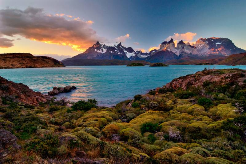 one ocean expeditions patagonia cruise