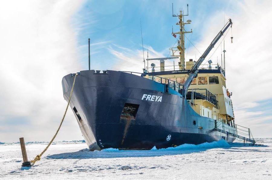 Waterproof Expedition - Freya Orca Snorkel