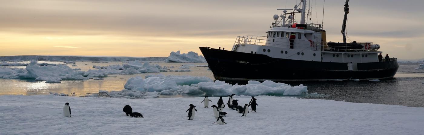 hans hansson bespoke antarctica vessel