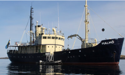 mv malmo norway expedition cruise snorkel with orca