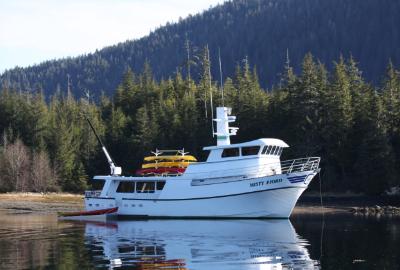 misty fjord alaska cruises