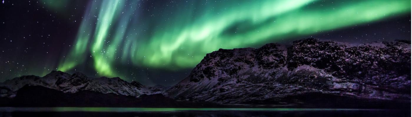 noorderlicht northern lights cruise