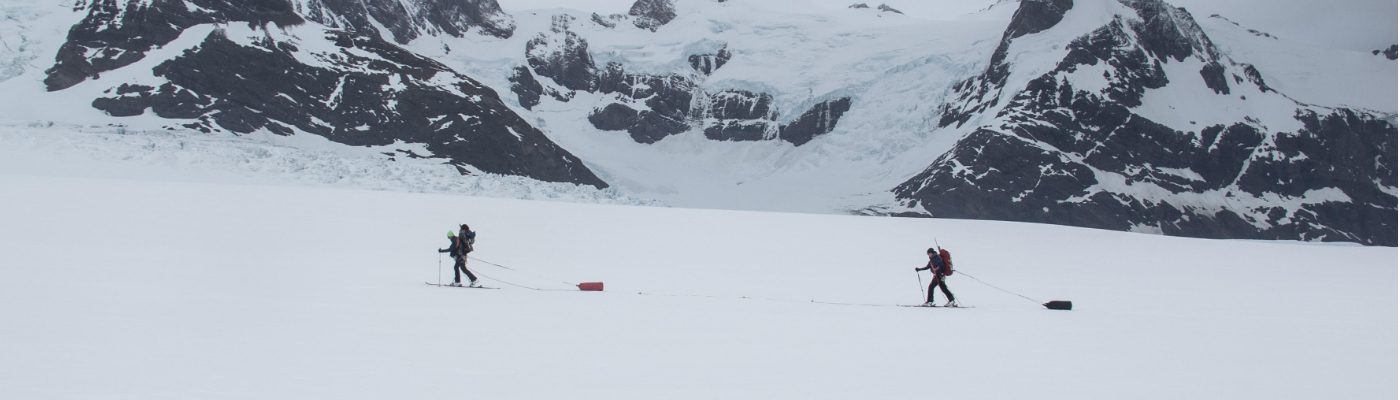 icebird ski south georgia