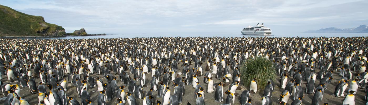 le boreal luxury antarctica circle cruise