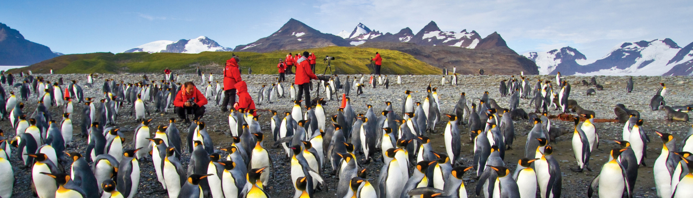 national geographic eendurance luxury south georgia and antarctica cruise
