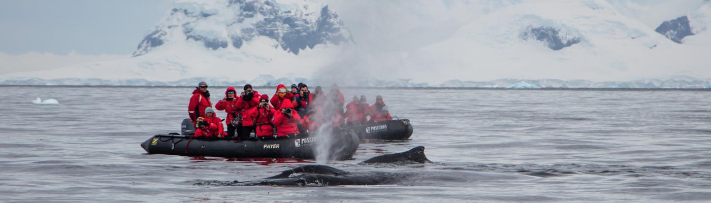 sea spirit antarctica cruise
