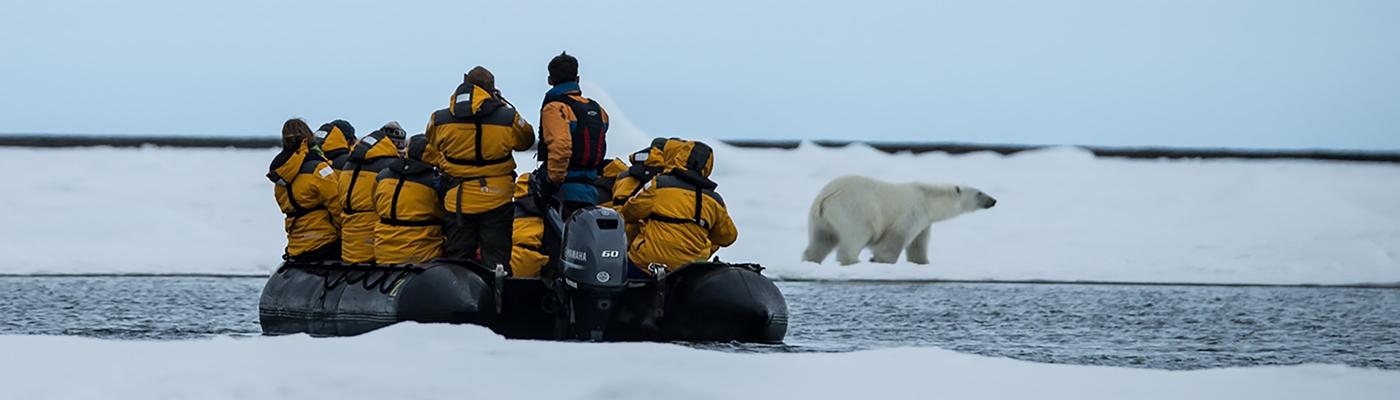 ultramarine spitsbergen polar bear cruise
