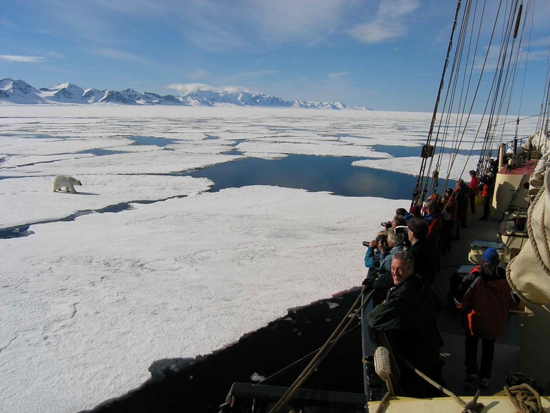 Polar bear spotting  %c2%a9 jan belgers oceanwide expeditions jan belgers oceanwide expeditions