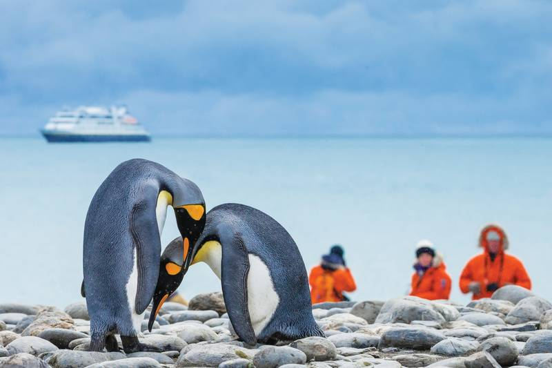national geographic orion luxury south georgia and antarctica cruise
