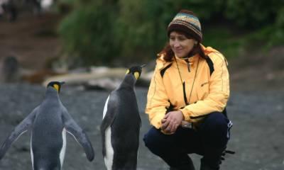 sub antarctic islands macquarie island ponant