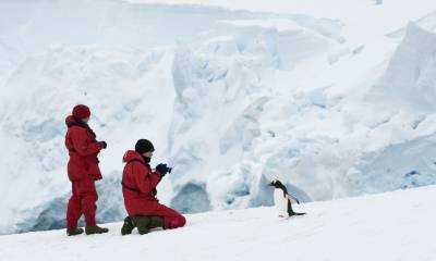 resolute antarctica and patagonia cruise