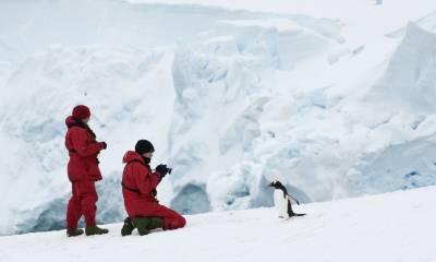 resolute antarctica and patagonia cruise